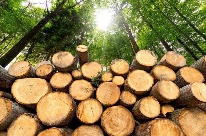 combustibles sólidos como fuente de calor industrial